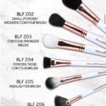 beautilicious india face brush